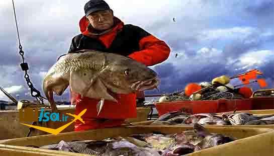 اقتصاد ایسلند (صنعت ماهیگیری)