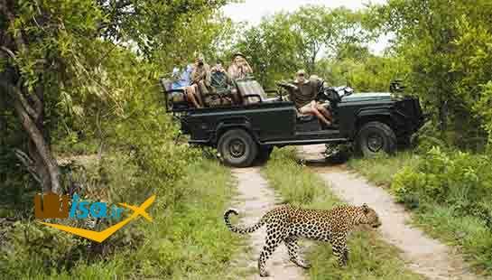 پارک های ملی حیات وحش آفریقای جنوبی