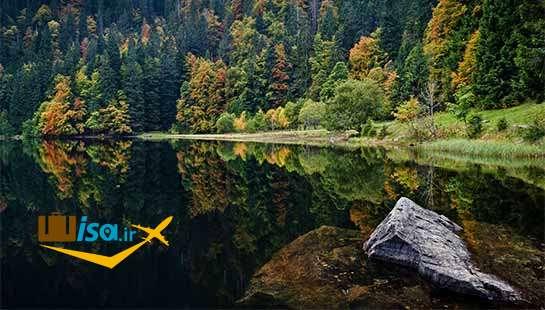جغرافیای آلمان (مناظر زیبای جنگلی آلمان)
