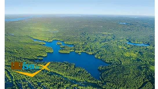 جغرافیای فنلاند ( جنگلها)