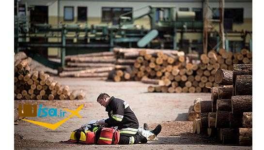 اقتصاد لتونی (صنعت چوب)