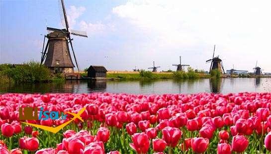 هلند سرزمین گل