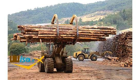 اقتصاد نیوزلند (صنعت چوب)