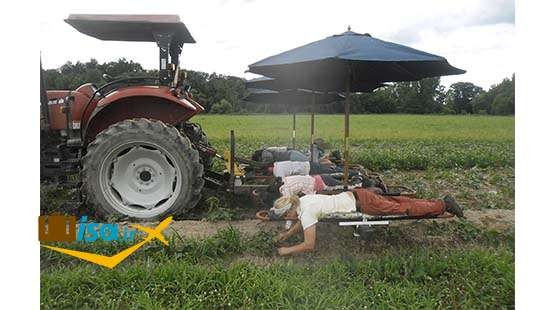 اقتصاد اسلواکی (کشاورزی)